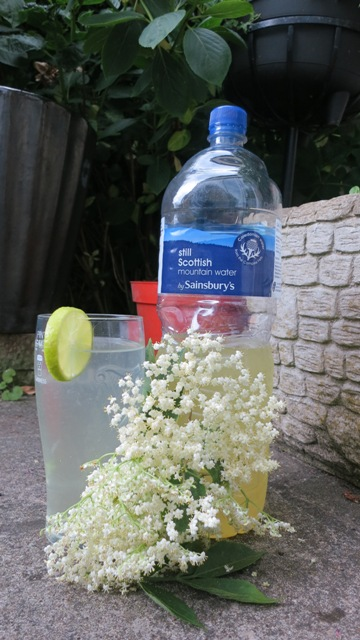 Elderflower Cordial - Yum :D