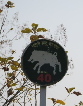 Wild Boar are restricted to 40kph ;)